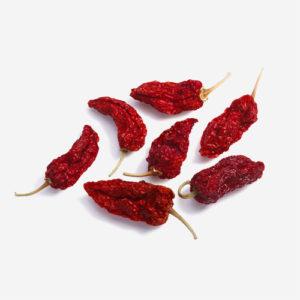 Økologiske Bhiut Jolokia Chili – hele og tørrede – 20gr